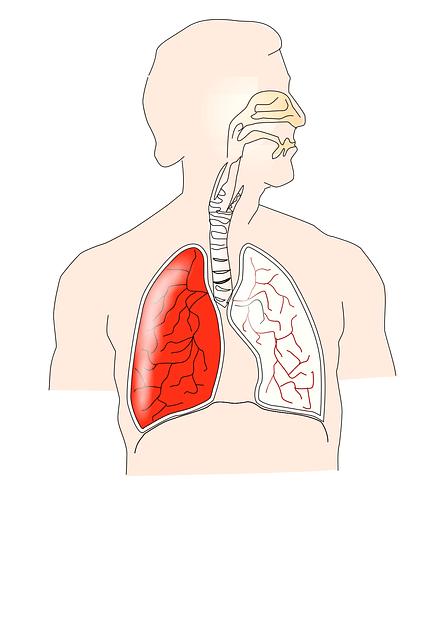 Tomillo para el sistema respiratorio