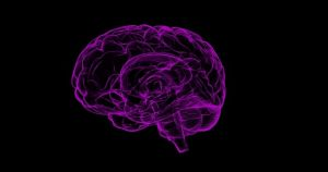 Ginseng para la función cognitiva