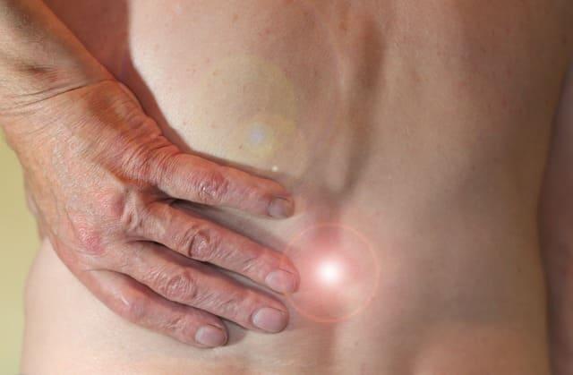 grosellero negro antiinflamatorio